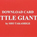 LITTLE GIANT 2 by Sho Takashige
